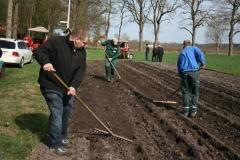 Kartoffeln_pflanzen_2015_KartoffelpflanzenIMG_74Kartoffeln_pflanzen_20153